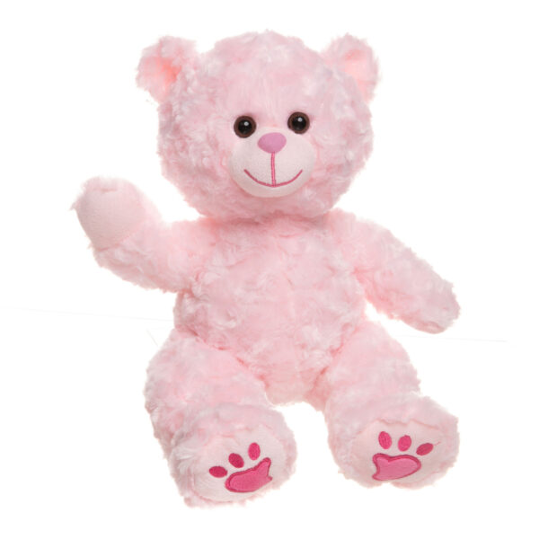 Charm the Pink Teddy Bear