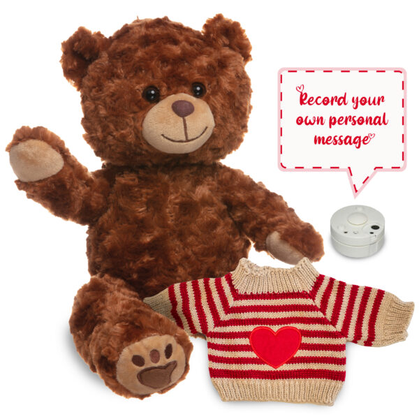 Brown Bear with soundbox and knitted heart jumper